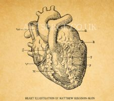 Heart illustration: Amnesia a machine for pigs by artserge
