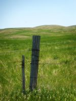 One Fence Post at a Time by ArtByASmith