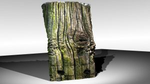 Automatic 3d model : wood by hipe-0