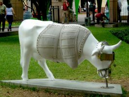 Cow 9 by JacquiJax-Stock