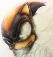 Shadow close up - Colour pencil WIP by MissTangshan95