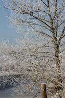 Ice landscape Diksmuide 15 by carinaD-stock