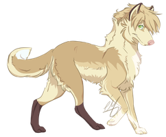 Ciaran - Young adult Ref by ShadowMimi