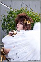 SSBB: Winged Angel by CosplayerWithCamera