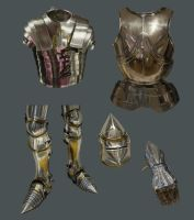 Metal Armour Study - Daily Practice by Olooriel