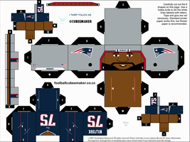 Vince Wilfork Patriots Cubee by etchings13