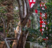 Hachiman Temple by taeliac