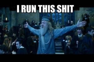 Hilarious Dumbledore by 4everlovedavidcaruso