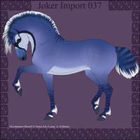 Joker Import 037 by Ikiuni