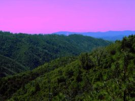 Pink Sunset on the Hillside by RottingBeefCarcasses