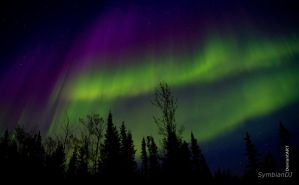 Northern Lights by symbiandj