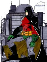 robin the dark night by wonderfully-twisted