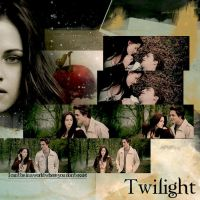 Twilight collage by Miss-deviantE