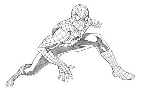 Spider-Man Movie -  Pencils by adr-ben