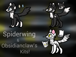 FC .: Spiderwing and Obsidianclaw's kits :. by SaachiPrime
