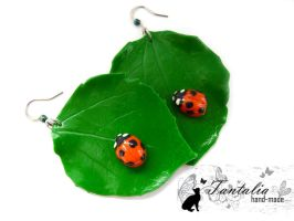 Earrings 'Ladybird' by Tantalia