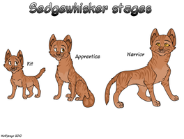 Sedgewhisker stages by Wolfjesyo