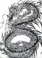 Black white dragon ink by OhioErieCanalGirl