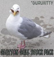 Glutton Gull Pack by gurukitty