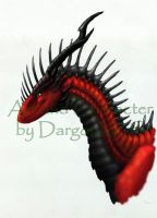Dargon Head Ref by DargonXKS