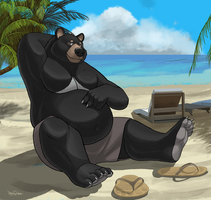 Beach bear by Dj-Rodney