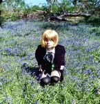 Alois Trancy~ My Favourite Flower... by PandoraBakura