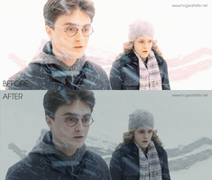 Harry and Hermione in HBP by HogwartSite