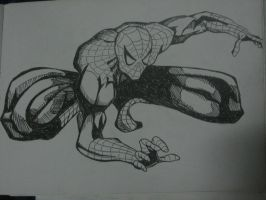 SPIDERMAN by shithlord