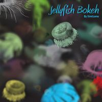 Jellyfish Bokeh by SimiLomo by similomo