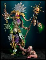 DIABLO III reaper of souls -Witch Doctor by INVERTVISION