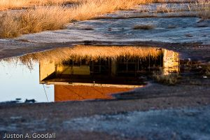Through the Looking Glass II by seripham