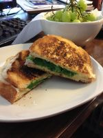 Havarti and Gouda Grilled Cheese by dragoon811