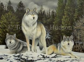 We three - wolf painting by Canis-Lupess