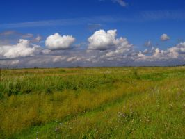 Field HDR by AnnFrost-stock
