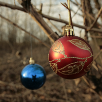 Christmas Ornament 01 by pitrih-stock