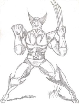 Angry Wolverine by ChocolateHoneybee