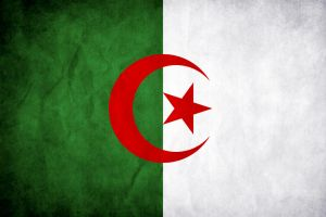 Algeria Grunge Flag by think0