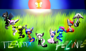.:Team Feline:. by LunaticDemonLuny