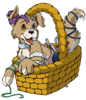Puppy in a basket by cowgirlem