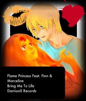 Bring Flame Princess To Life , Finn by DarrionX