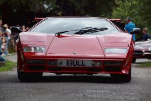 Countach by FurLined