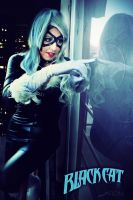 Black Cat - Old Days by FioreSofen