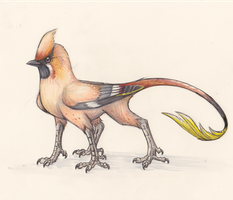 Waxwing Griff by MF99K