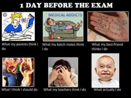 1 day before the exam by Sonicx1661