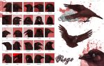 25expressions - Rego the crow by vesner