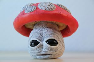 Fly agaric 1 by dhomochevsky-art