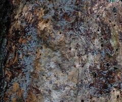 texture 74 by awjay