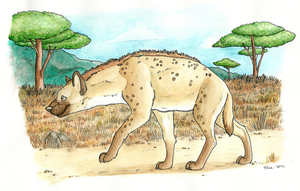 Nayah - Spotted Hyena by x-Mlice