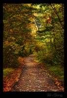 Autumn Path by Violet-Kleinert
