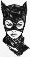 catwoman scan by darkartistdomain